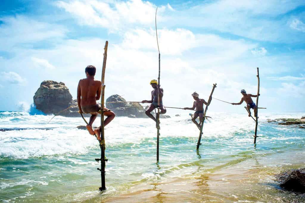 Шри-Ланка - чудо Азии - YouTube | 681x1024