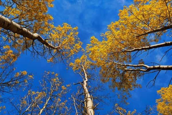 Перевал Школьный и Голубое озеро