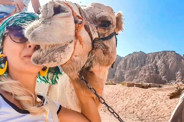 Дискавери 5 в 1: Дахаб, Каньон, верблюды, купание и квадроциклы