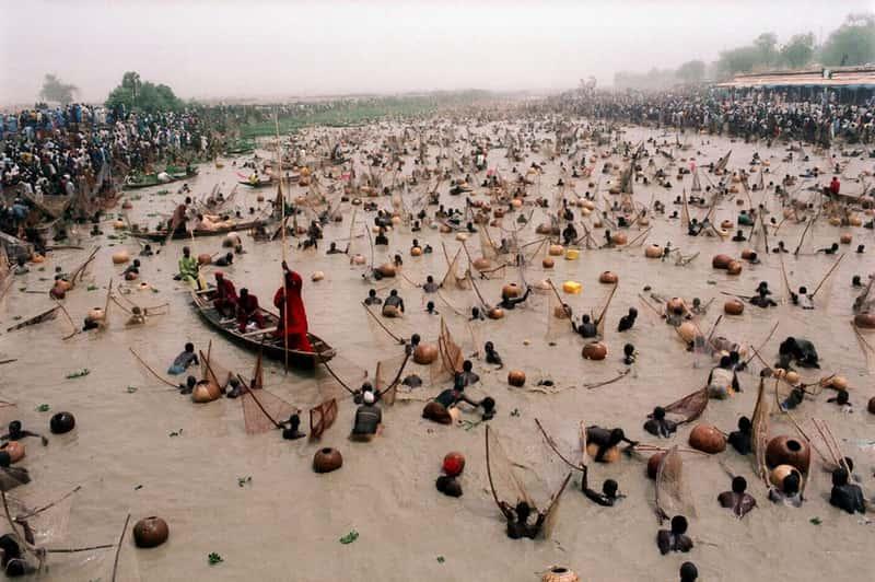 Рыболовный фестиваль Аргунгу, Нигерия